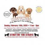 Doggy Fun Fest